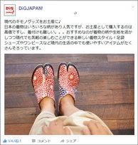 dig_japanFB_kiji3.jpg
