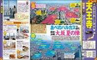 mmsanada_page5.jpg