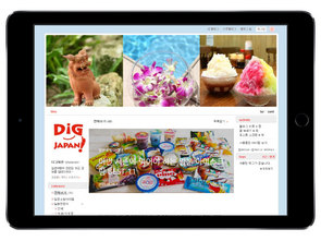 dig_naver_blog.jpg