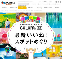 columntop_sashikae.jpg