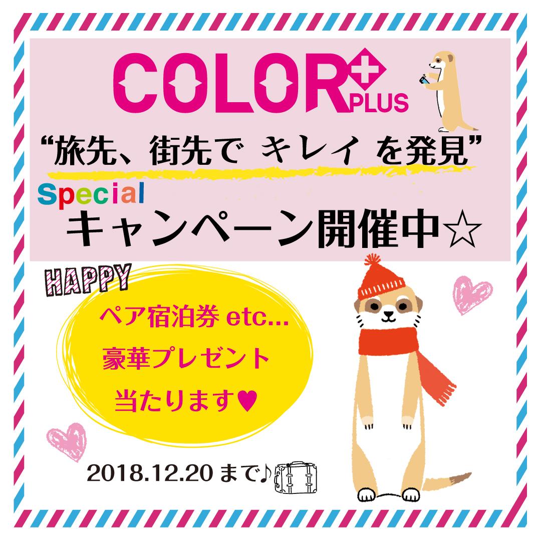 COLOR+カラープラスキャンペーン
